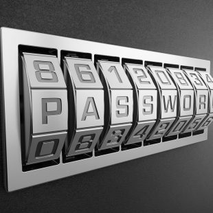 Passwords that Protect